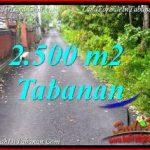 JUAL MURAH TANAH di TABANAN 25 Are VIEW KEBUN, LINGKUNGAN VILLA