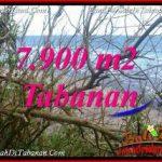 INVESTASI PROPERTY, JUAL MURAH TANAH di TABANAN BALI TJTB392