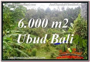 TANAH MURAH DIJUAL di UBUD BALI Untuk INVESTASI TJUB682