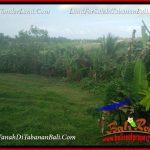 TANAH JUAL MURAH TABANAN BALI 4,800 m2 VIEW LAUT DAN SAWAH