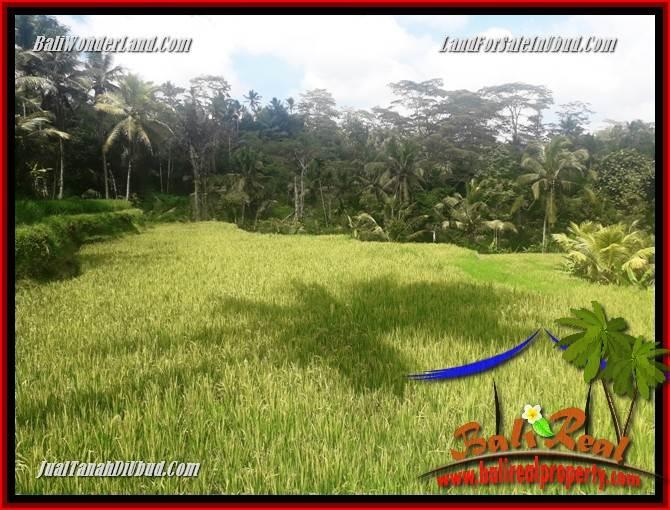 JUAL Tanah di Ubud Bali TJUB690