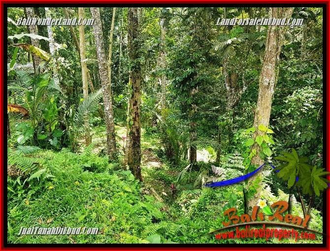 Tanah Murah di Ubud Bali Dijual 860 m2 di Ubud Tegalalang