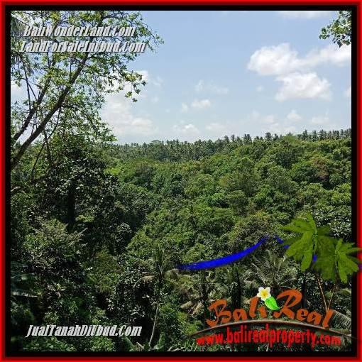 Tanah Murah di Ubud jual 33 Are View sungai, lingkungan Villa, Restoran dan Hotel