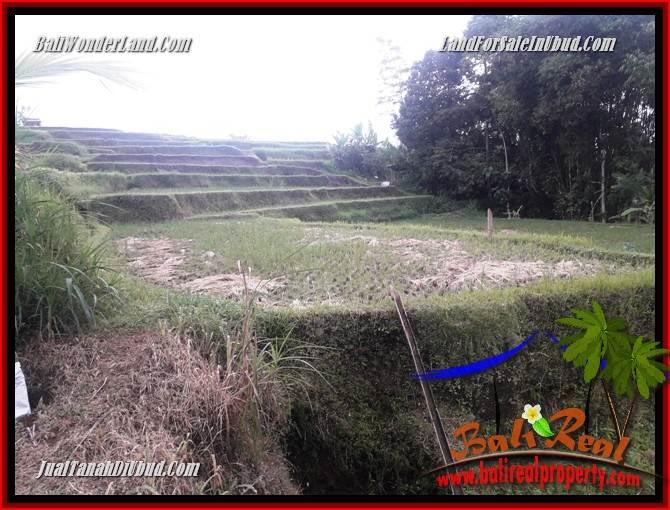Investasi Properti, Dijual Tanah Murah di Ubud Bali TJUB699