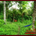 JUAL Tanah di Tabanan Untuk Investasi TJTB395