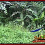 Tanah Murah di Tabanan Dijual Untuk Investasi TJTB398