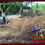 JUAL Murah Tanah di Tabanan Bali 6 Are View Kebun