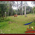 JUAL Tanah Murah di Tabanan Untuk Investasi TJTB403