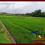JUAL Murah Tanah di Tabanan Bali 1,122 m2 View Sawah, Gunung dan Sungai Kecil