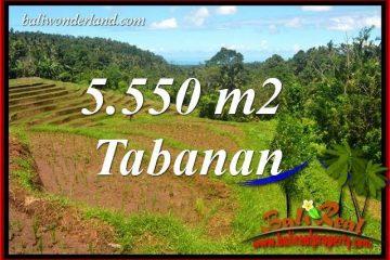Dijual Tanah di Tabanan TJTB405