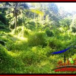 Tanah di Tabanan Dijual Murah Untuk Investasi TJTB406