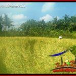 Investasi Property, Tanah di Tabanan Dijual Murah TJTB407