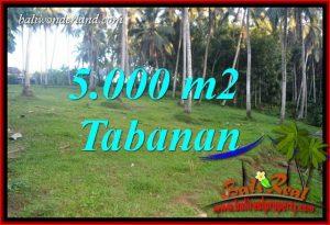 Tanah Murah Dijual di Tabanan 50 Are di Tabanan Selemadeg