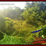 JUAL Tanah di Tabanan Bali 9,350 m2 View Kebun dan Sawah