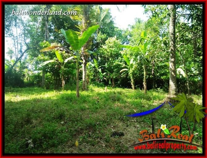 Tanah Murah Dijual di Tabanan Bali TJTB411