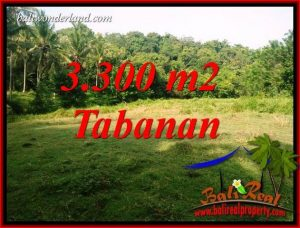 JUAL Tanah di Tabanan Bali Untuk Investasi TJTB413