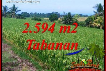 JUAL Tanah di Tabanan Bali Untuk Investasi TJTB414