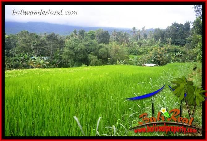JUAL Tanah di Tabanan Bali Untuk Investasi TJTB415