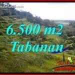 JUAL Tanah di Tabanan 65 Are View Gunung dan Sawah