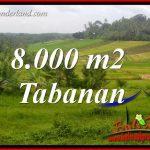 Tanah Dijual di Tabanan 80 Are di Tabanan Selemadeg
