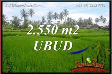 Investasi Properti, Tanah Murah Dijual di Ubud Bali TJUB700