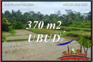 JUAL Tanah di Ubud Bali 4 Are View sawah