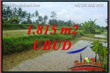 Investasi Properti, Dijual Murah Tanah di Ubud Bali TJUB703
