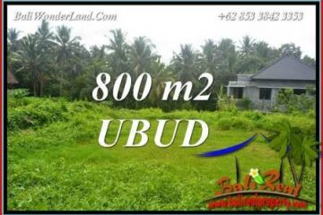 JUAL Tanah Murah di Ubud TJUB706