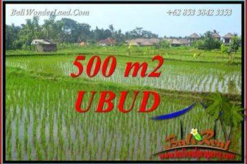 Tanah di Ubud Dijual Murah 500 m2 di Sentral Ubud