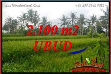 Investasi Properti, Tanah Murah Dijual di Ubud TJUB710