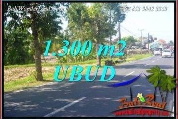 Dijual Murah Tanah di Ubud 1,300 m2 di Ubud Tegalalang