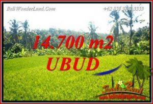 JUAL Tanah di Ubud 147 Are di Ubud Tegalalang