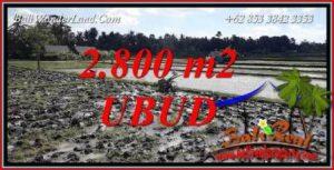 Investasi Property, Tanah di Ubud Dijual Murah TJUB722