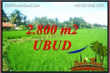 Tanah di Ubud Bali Dijual 28 Are View Sawah Lingkungan Villa