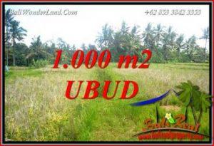 Investasi Property, jual Tanah Murah di Ubud TJUB727