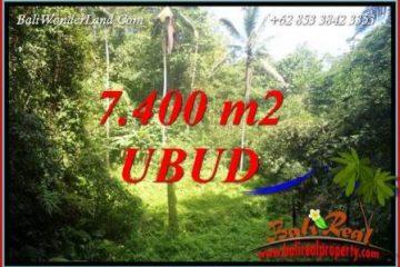 Tanah Murah jual Ubud 7,700 m2 View air terjun
