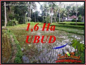 Tanah di Ubud jual Murah 16,000 m2 View sawah dan sungai