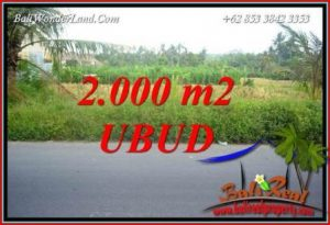 Investasi Property, jual Tanah Murah di Ubud TJUB737