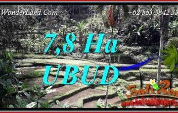 Tanah Murah Dijual di Ubud Untuk Investasi TJUB741