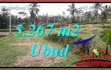 JUAL Murah Tanah di Ubud 5,267 m2 View sawah