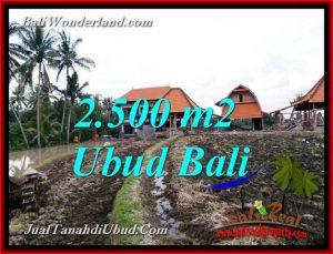 JUAL TANAH di UBUD 2,500 m2 VIEW SAWAH, SUNGAI LINGKUNGAN VILLA