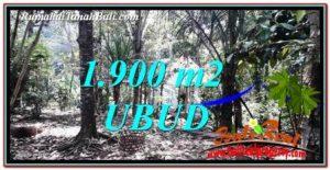 DIJUAL MURAH TANAH di UBUD BALI 1,900 m2 di Ubud Tampak Siring