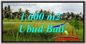 DIJUAL MURAH TANAH di UBUD Untuk INVESTASI TJUB756