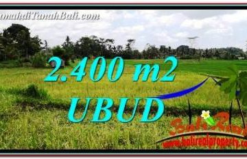 TANAH DIJUAL di UBUD BALI 24 Are di Ubud Tampak Siring