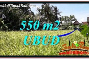 TANAH MURAH di UBUD DIJUAL 6 Are di Sentral Ubud
