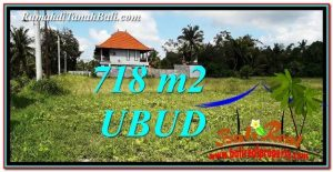 TANAH DIJUAL di UBUD 7 Are di Sentral Ubud