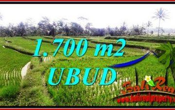 TANAH MURAH di UBUD DIJUAL 1,700 m2 di Ubud Tegalalang