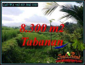 TANAH MURAH di TABANAN BALI Untuk INVESTASI TJTB501