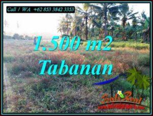TANAH di TABANAN BALI DIJUAL MURAH 15 Are VIEW SAWAH DEKAT PANTAI