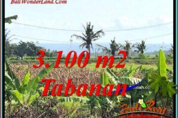 TANAH MURAH DIJUAL di TABANAN BALI 31 Are di KERAMBITAN TABANAN